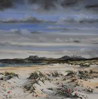 Beach Poppies - Mellon Udrigale