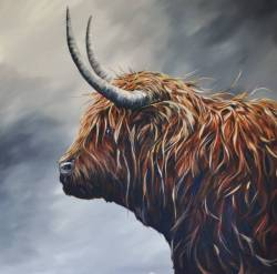 Highland Coo - Beatrice