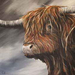 Highland Coo - 'Wendy'