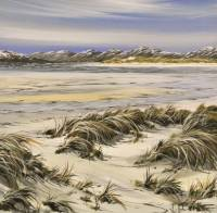 Winter Dune Grass - Luskentyre